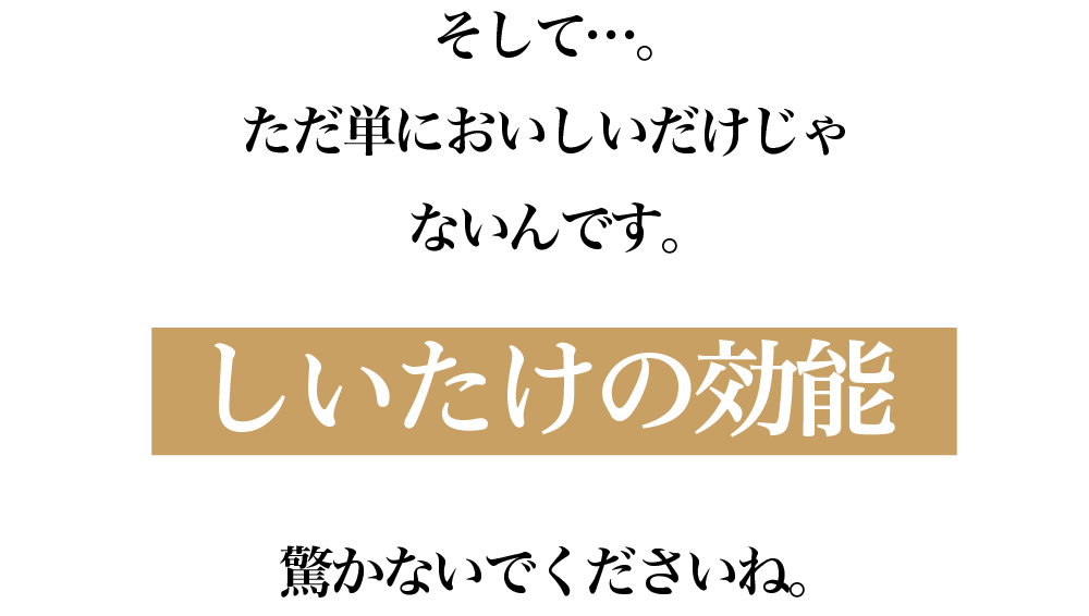 愛椎ファミリー_ショップ08