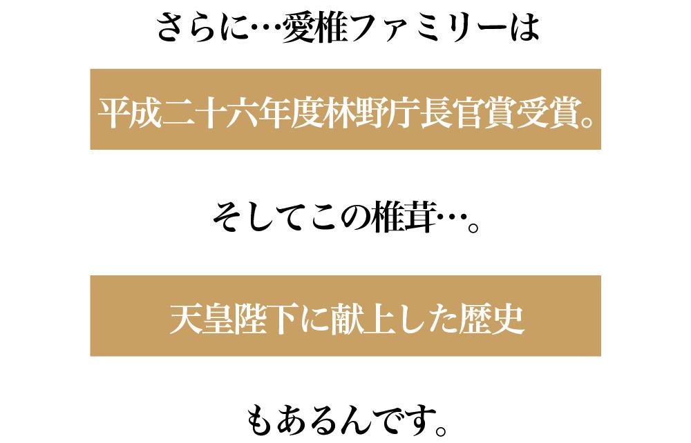 愛椎ファミリー_ショップ09