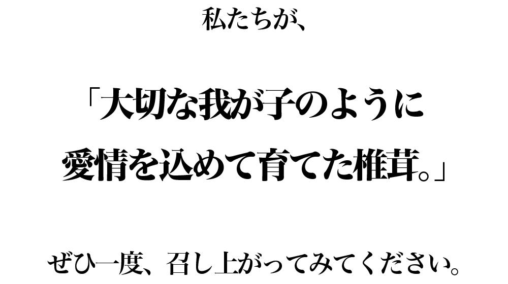 愛椎ファミリー_ショップ10