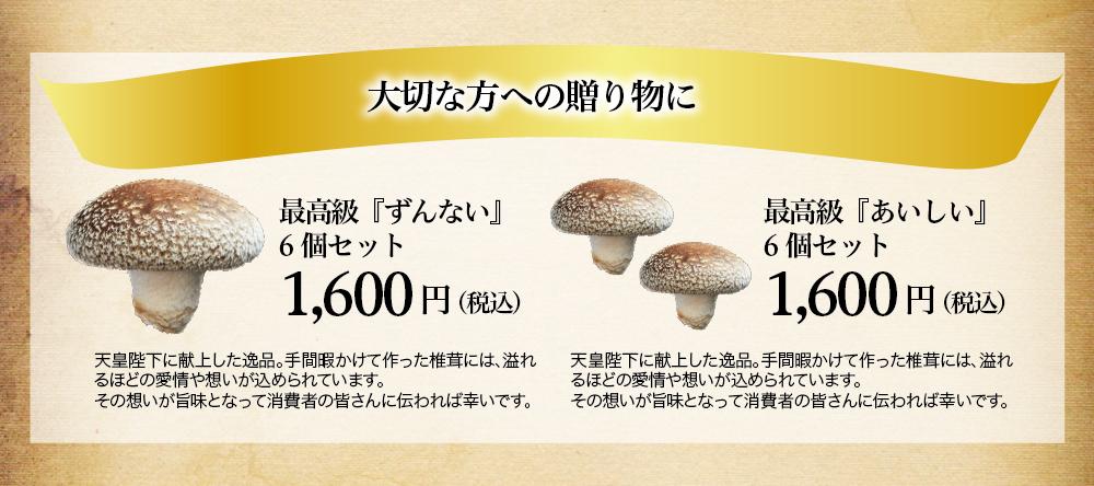 愛椎ファミリー_ショップ13